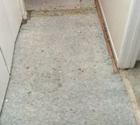 Replacing the Old Carpet With Vinyl Plank Flooring | Hometalk