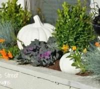 Decorating A Fall Window Box | Hometalk