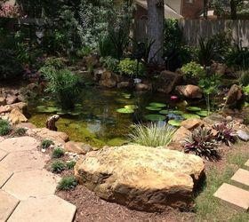 Plastic Garden Ponds