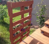 Pallet Privacy Living Wall