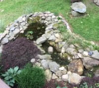 Our Backyard Oasis {Pond & Waterfall}