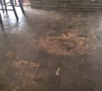 My living room has a concrete floor, help me with cheap ...