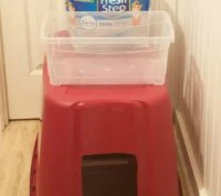 Cat Owners: 12 Ways to Hide a Litter Box in Plain Sight ...