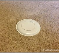 How to Remove Pet Stains From Carpet | Hometalk