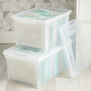 An example of a plastic storage tote from The Container Store.