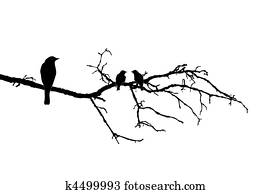 Vector silhouette of the bird on branch tree Clipart
