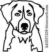 Bernese Mountain Dog02 Clipart u10930990