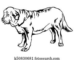 Neapolitan mastiff dog cartoon for coloring Clipart