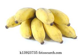 香蕉 種類 種類一應俱全的圖庫   494 香蕉 種類 Photos   Fotosearch
