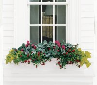3 Easy Ideas for Flower Boxes   Real Simple