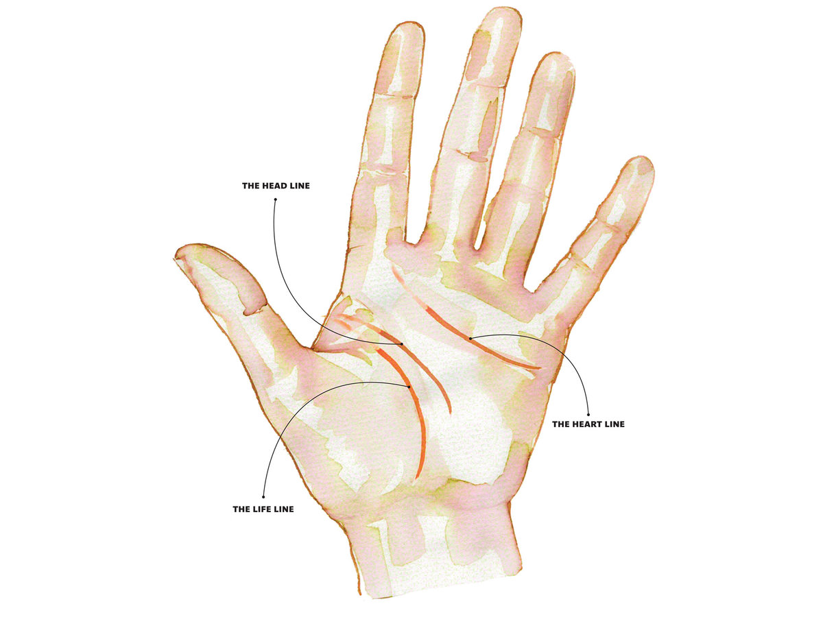hight resolution of palm reading
