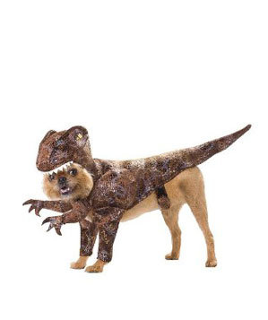 Animal Planet Raptor Costume