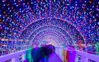 The Best Christmas Light Displays in Every State | Travel ...