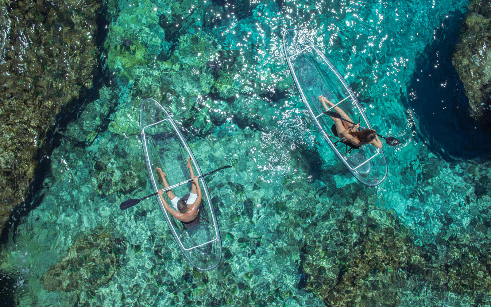 Iphone X Wallpaper Coral Reef These Transparent Kayaks Give You Incredible Views Of The