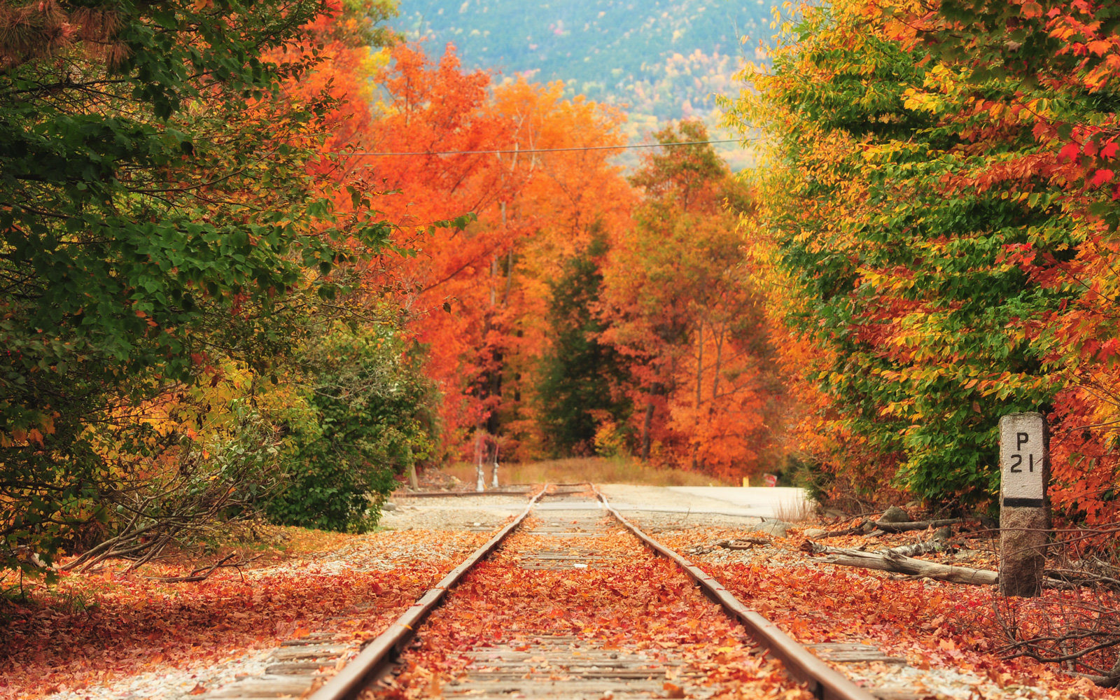 Great Smoky Mountains Fall Iphone Wallpaper Amtrak Rolls Out Vintage Trains For Fall Foliage Lovers