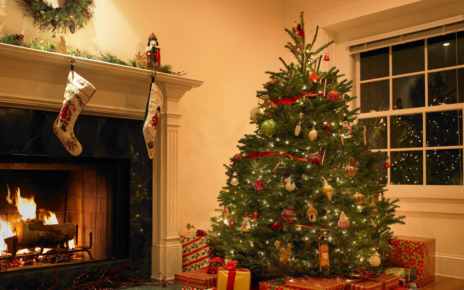 Your Christmas Tree Might Be Covered in Bugs  Travel