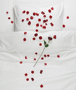 Image result for rose petals on bed sheets couple