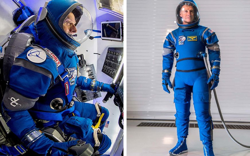 Elon Musk shares first full-body photo of SpaceX's ...