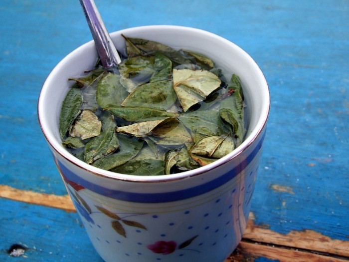 Visit Peru Image: The Peru food tour closes with a cup of coca tea still has the leaves steeping in its cup, and a spoon is sticking out. The cup sits on a table with fading blue paint.