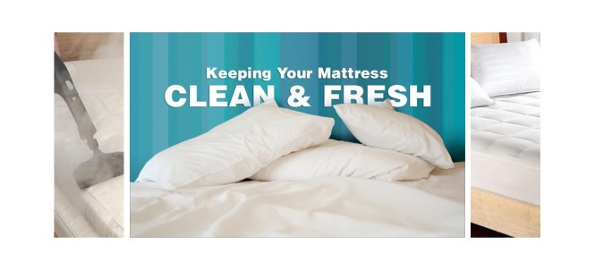 Professional Mattress Cleaning Canberra Medium