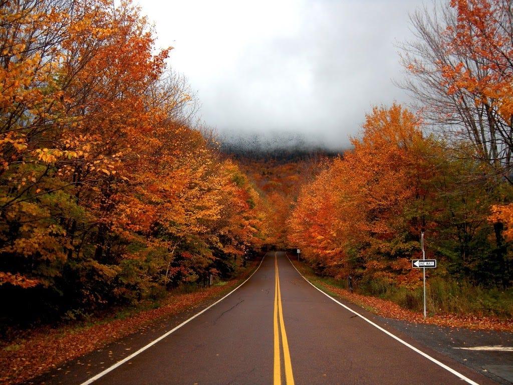 Fall Cape Cod Wallpaper Great Fall Foliage Runs In Vermont Great Runs Medium