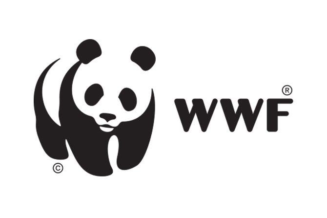 Big fish: WWF joins AIDCHain! – AIDCOIN