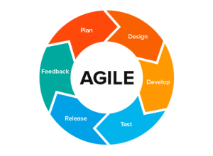 Waterfall vs Agile Methodology in Software Development
