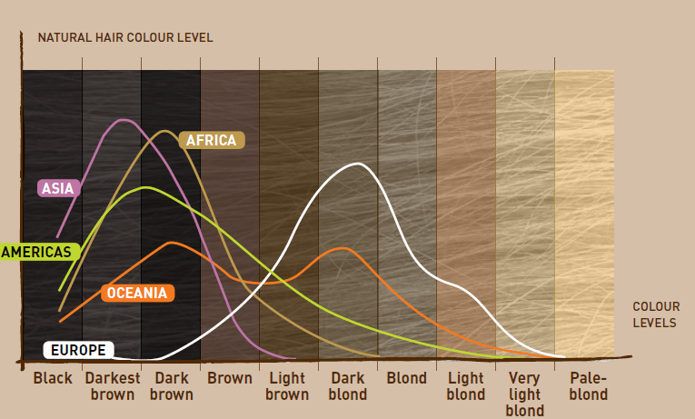 Diversity Of Hair Types Beauty Tomorrow Medium