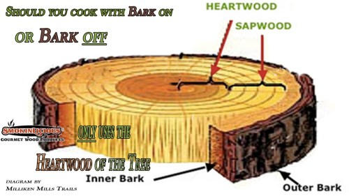 small resolution of this diagram shows the two key elements of the tree that can effect your barbecue results smokinlicious only harvest wood from the heartwood of the tree
