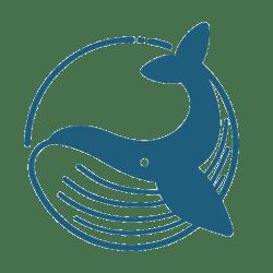 whale medium global