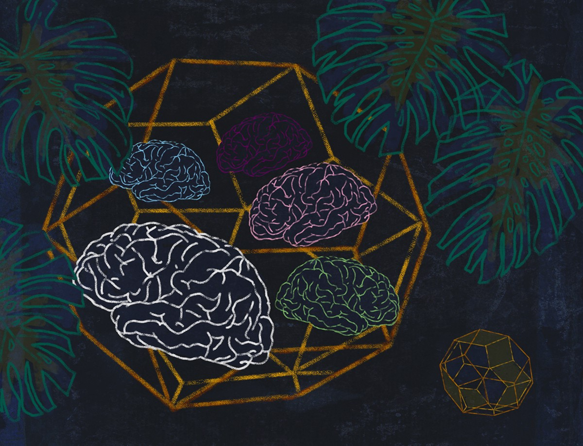 The geometry of consciousness is a multidimensional math trip
