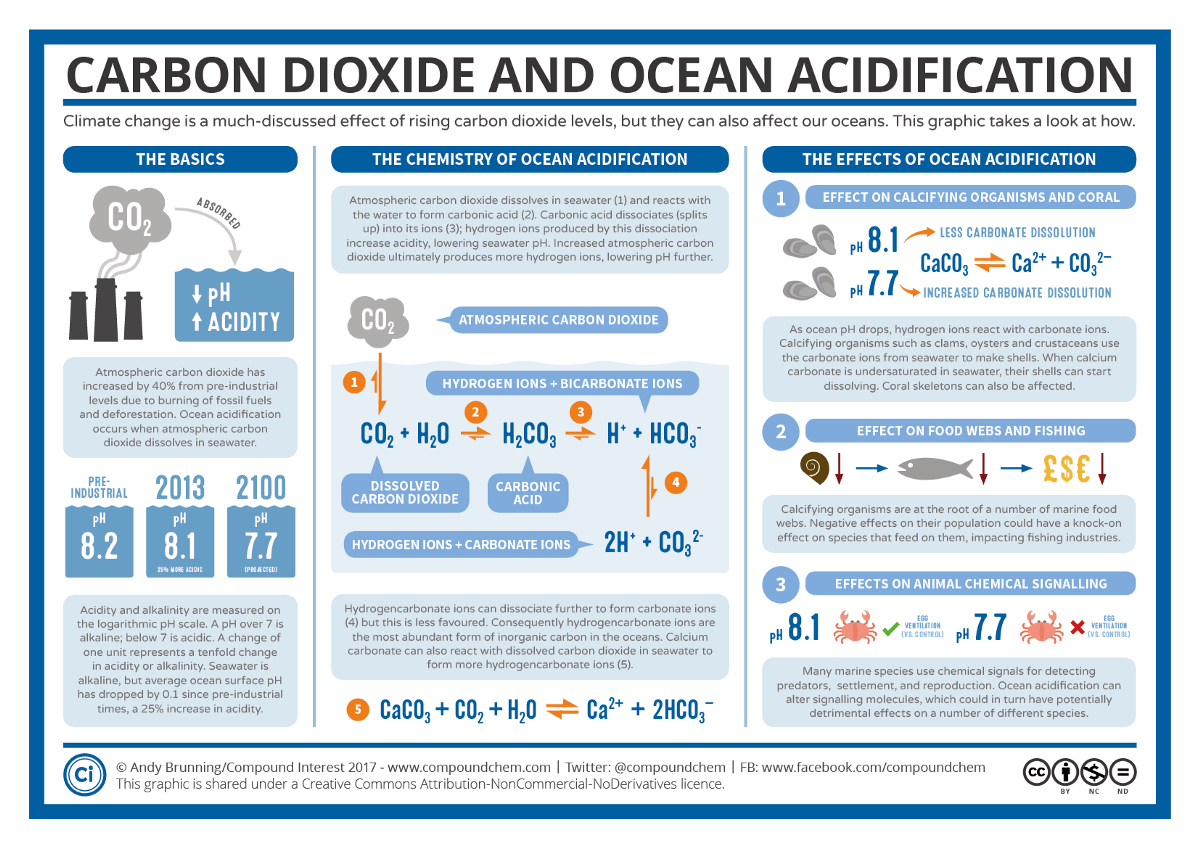 Trouble At Sea What Carbon Dioxide Emmisions Are Doing To