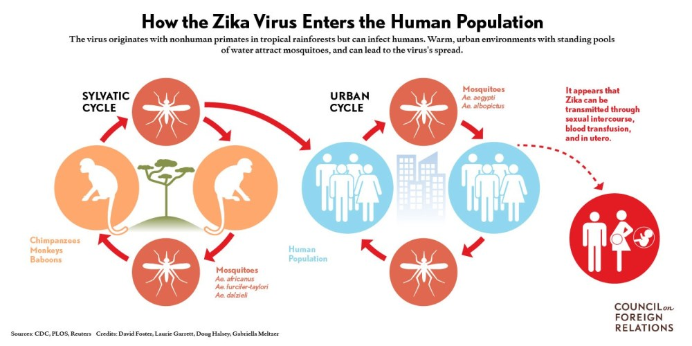 medium resolution of vote explanation for h r 5243 zika response appropriations act of 2016