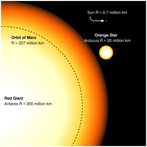 small resolution of the sun today is very small compared to giants but will grow to the size of arcturus in its red giant phase a monstrous supergiant like antares will be