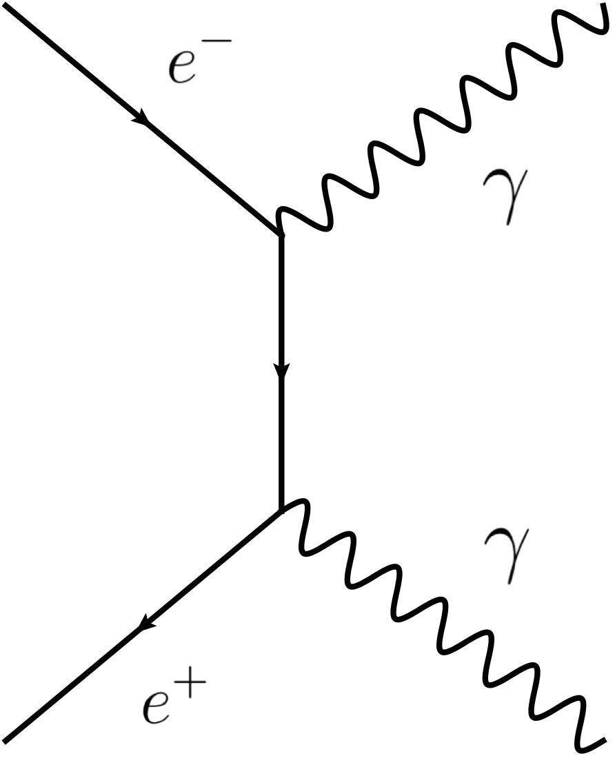 Richard Feynman: the genius of simplicity – Predict