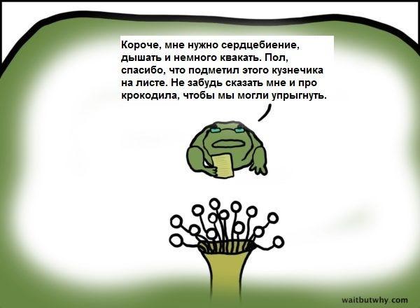 What Is Falling Action Of The Yellow Wallpaper Neuralink Илона Маска Vadim Medium