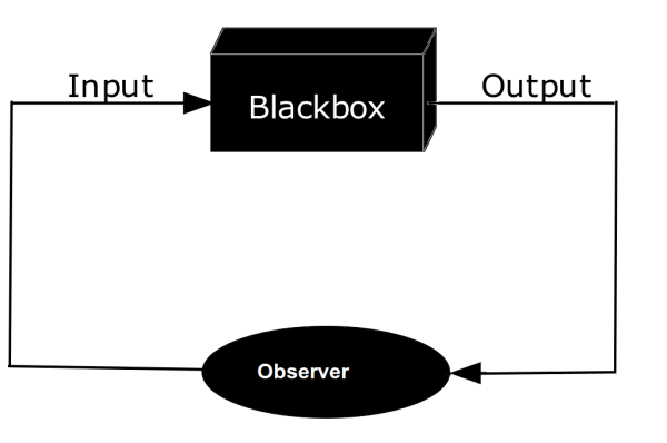 Why viewing yourself as a black box is one of the best