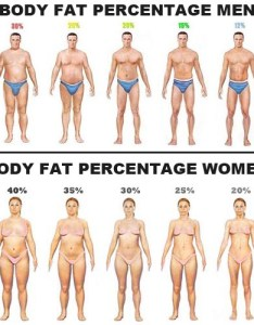 Visual depiction of normally seen fat percentages also fitness part  aesthetic physique anand  medium rh