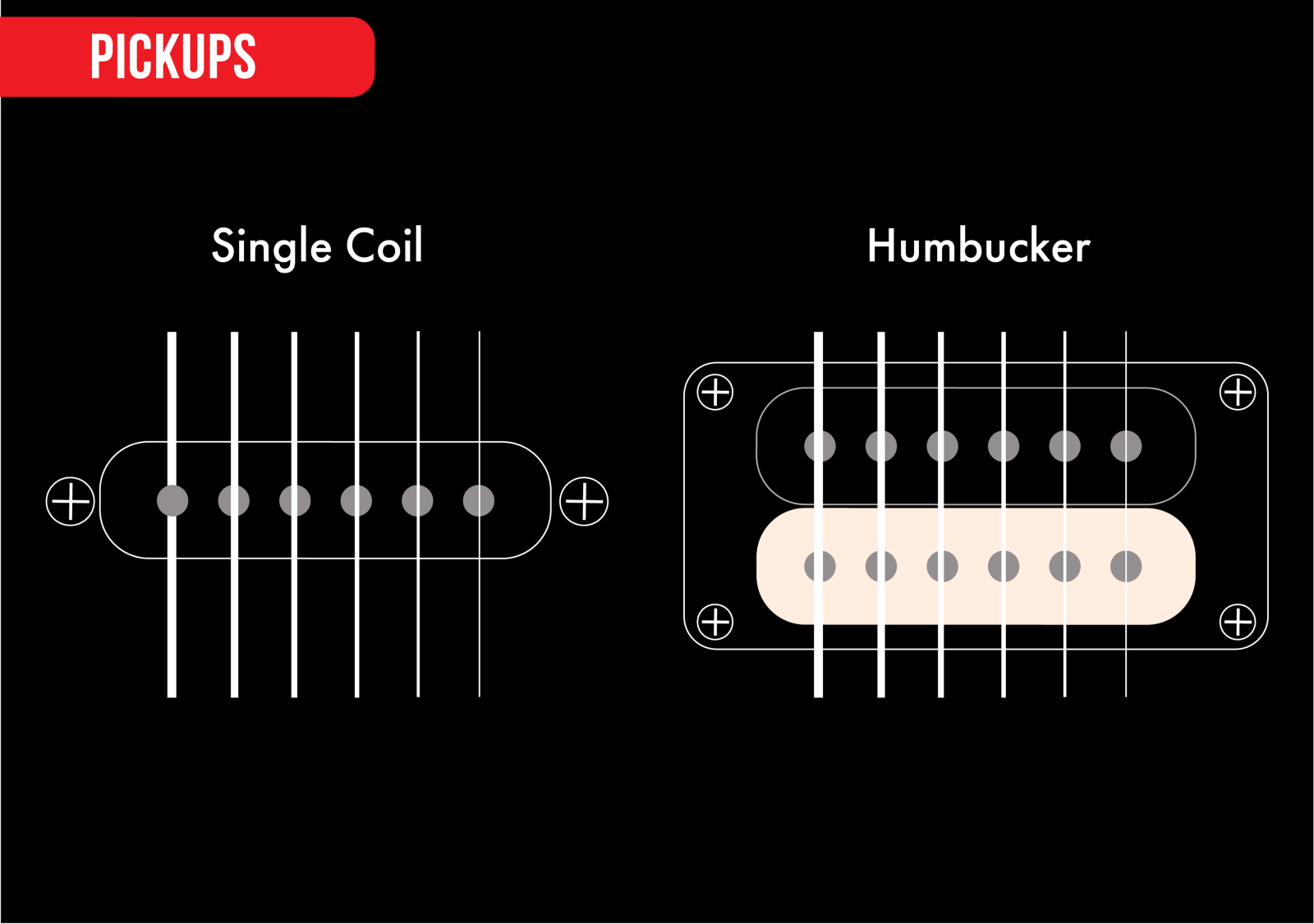 hight resolution of pickups are the electromagnetic devices that collect the sound of the strings and convert that into an electronic signal the two most common types of bass