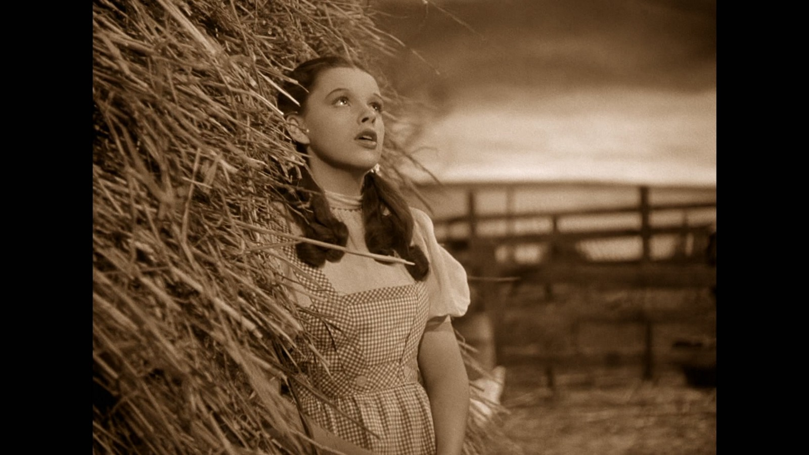 Archetypes The Wizard Of Oz Part One Go Into The Story
