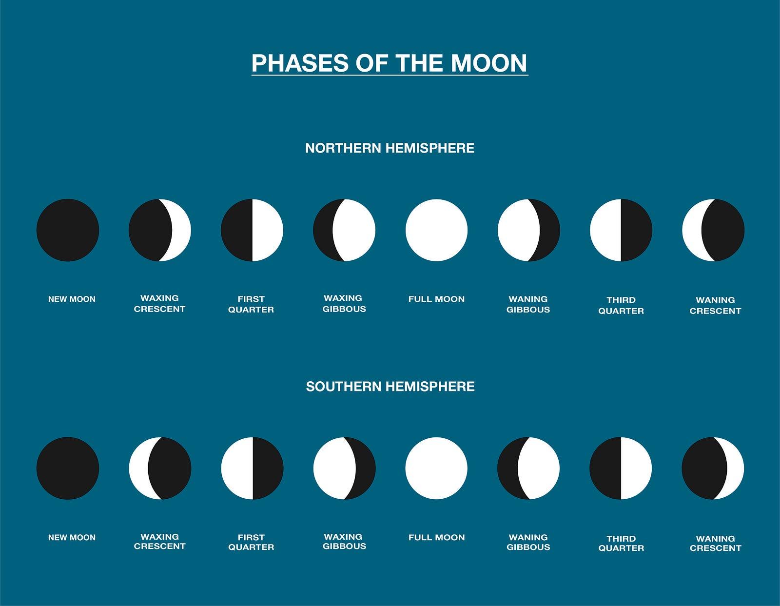Homework Helper Phases Of The Moon The Beaker Life