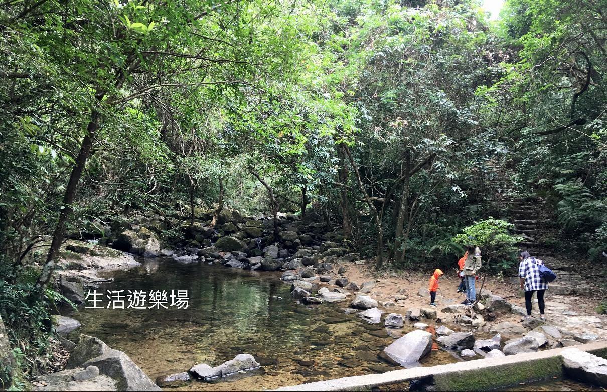 大埔:大埔滘林徑(藍路) – 生活遊樂場 – Medium