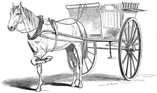 The Capitalist Horse and the Socialist Cart