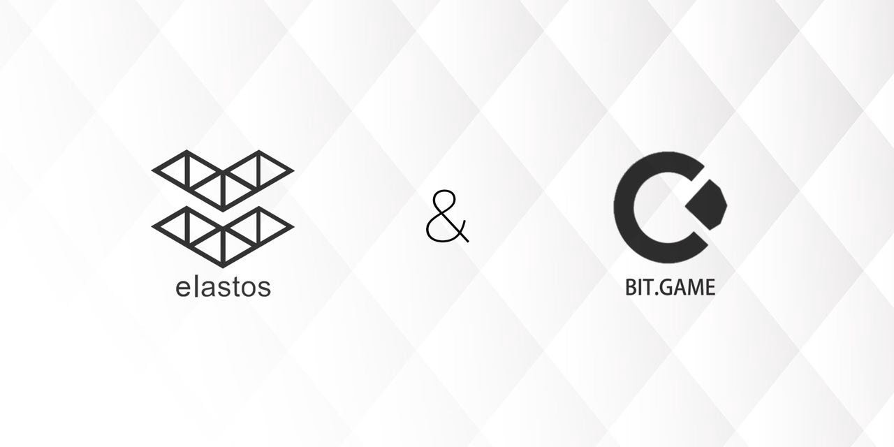 Rong Chen's Speech at the Elastos and BIT.GAME Meetup
