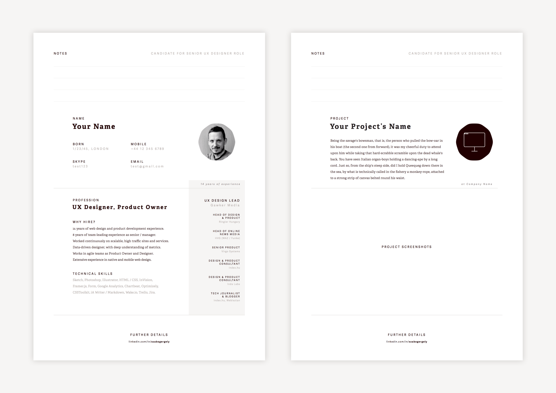 3 Page Resume Design