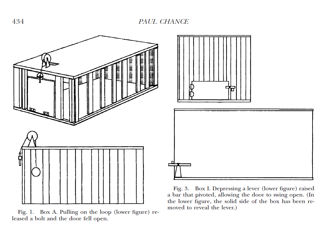 [ Paper Summary ] Thorndike's Puzzle Boxes And The Origins