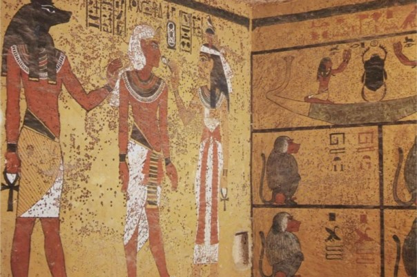 Potentially deadly fungus was found on the tomb walls