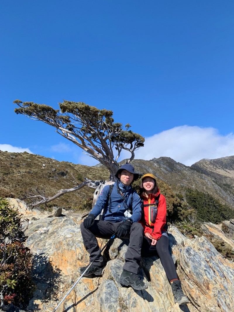 嘉明湖向陽名樹