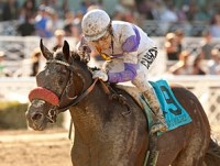 Bond Holder Out of Risen Star With Injury - BloodHorse