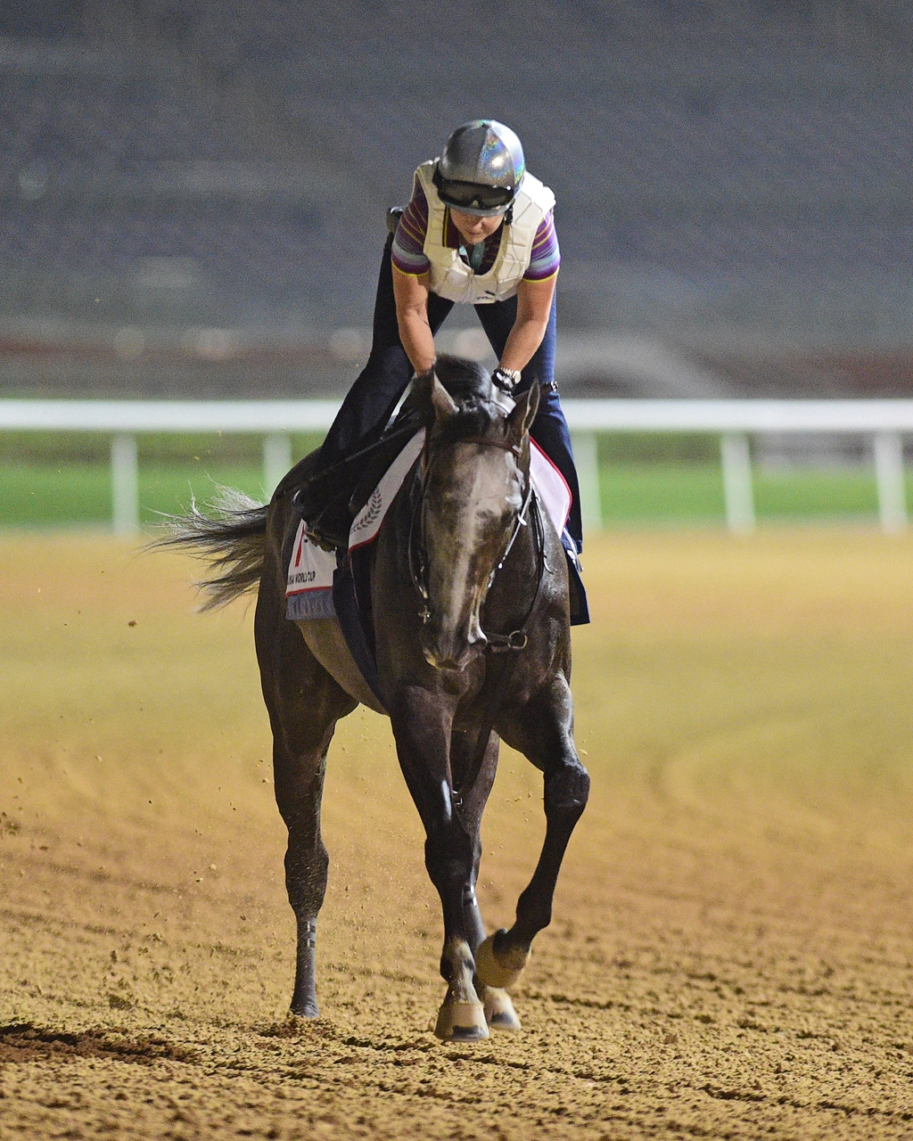Arrogate Lands Post Nine For Dubai World Cup